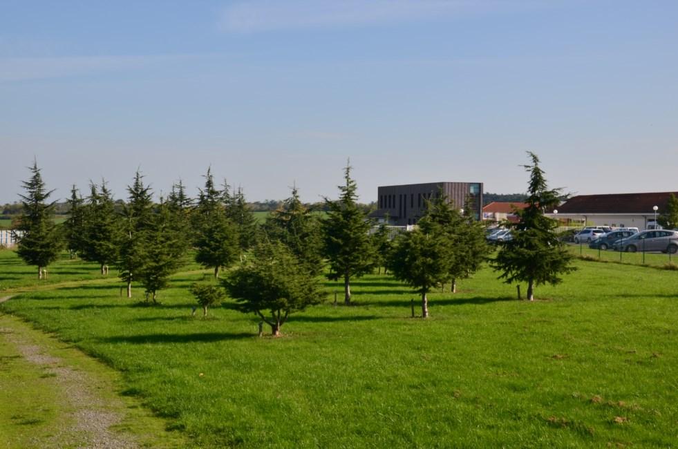 Mairie d 39 ancenis jardins parcs et aires de jeux for Jardin 2000